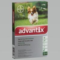 Advantix spot on kutyáknak 4 kg alatt