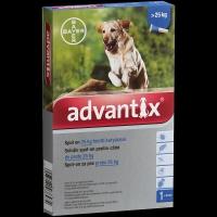 Advantix spot on kutyáknak 25 kg felett